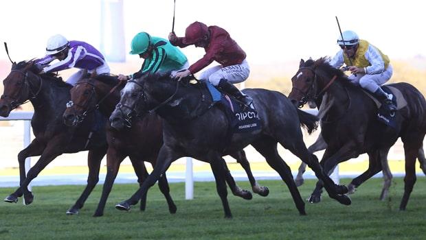 Roaring-Lion-Horse-Racing-min