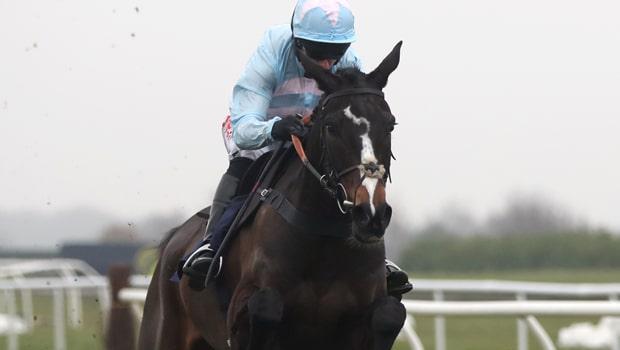 Black-Op-Horse-Racing-road-to-Cheltenham-min