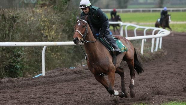 Footpad-Horse-Racing-Ryanair-Chase-min