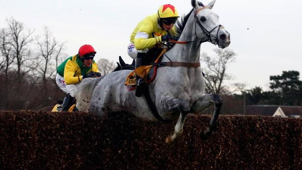 Harry-Cobden-and-Politologue-Horse-Racing-min
