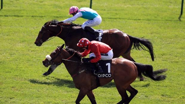 Mabs-Cross-Horse-Racing