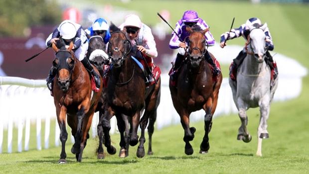 Too-Darn-Hot-Horse-Racing