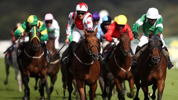 Dubai-Acclaim-Horse-Racing