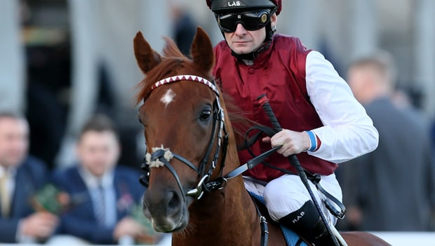 Royal-Line-Horse-Racing