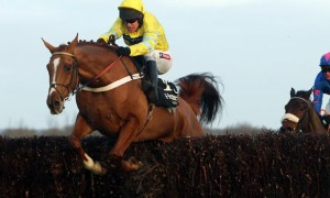 Triolo D Alene horse racing grand national