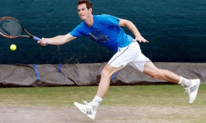 Andy Murray against Kevin Anderson Wimbledon