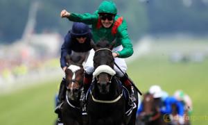 Harzand Horse Racing