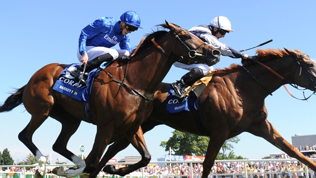 Barney-Roy-Horse-Racing-Qipco-Champion-Stakes