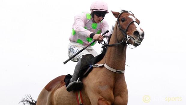Faugheen-Horse-Racing-min