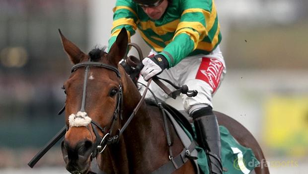 Minella-Rocco-Horse-Racing