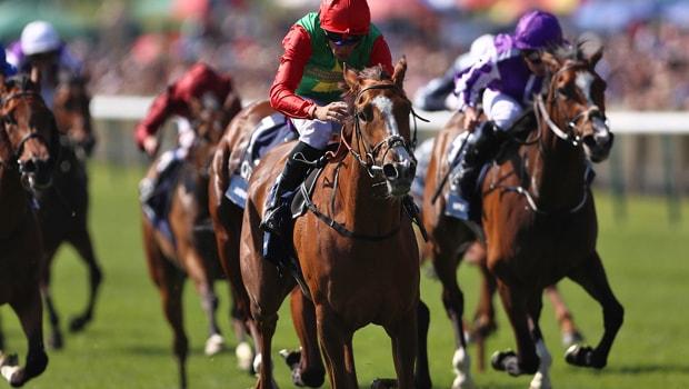 Billesdon-Brook-Horse-Racing-min