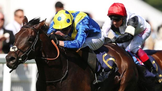 Poets-Word-Horse-Racing-min