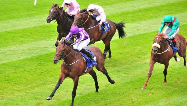 Connections-Horse-Racing-Mendelssohn-min