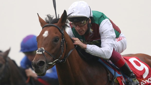 Without-Parole-Horse-Racing-Qatar-Sussex-Stakes-min