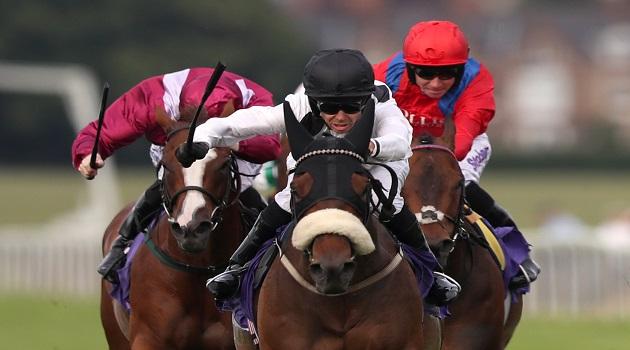 Judicial Horse Racing