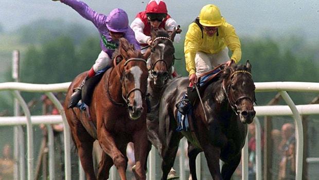 Life-Of-Riley-Horse-Racing-min
