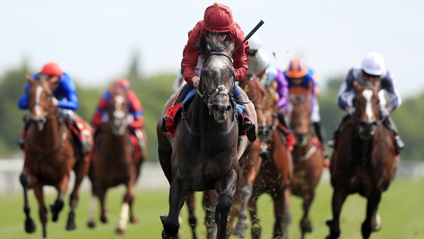 Roaring-Lion-Horse-Racing-Juddmonte-International-min
