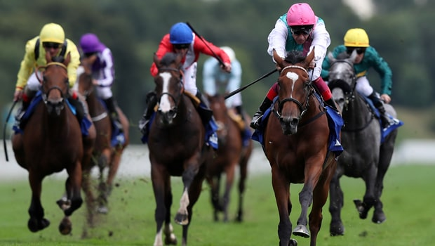 Enable-Horse-Racing-min