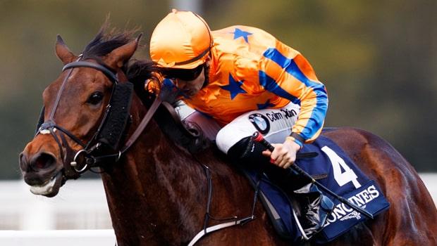 Torcedor-Horse-Racing-Melbourne-Cup-min