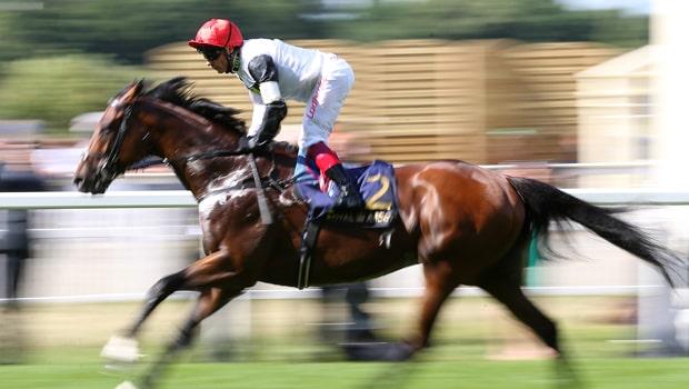 Cracksman-Horse-Racing-Qipco-Champion-Stakes-min