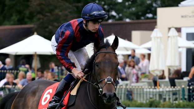 The-Tin-Man-Horse-Racing-min