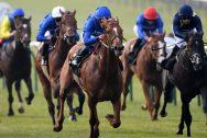 Jalmoud-Horse-Racing