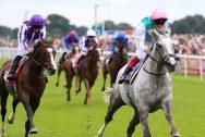 Logician-Horse-Racing