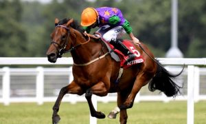 Lady Bowthorpe Horse Racing