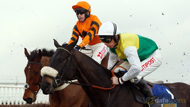 Many-Clouds-2015-Grand-National-winner